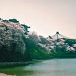 木村拓哉がSMAPとして初めてのコンサートを行った日本武道館