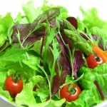 サラダはドレッシングより量の方が気になるキムタクさん♪