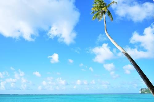 summer-ocean